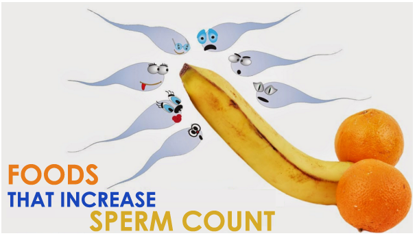 Increase sperm count natural right!