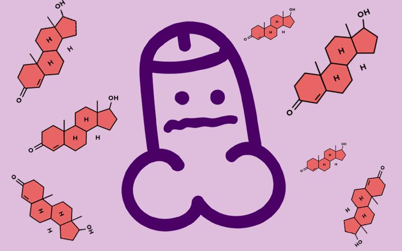 Role of Testosterone in Massive Erection